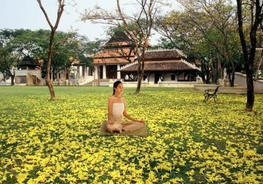 wellness-tourism-world-travel-index