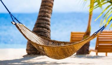 travelindex-hotels-travel-directory-2175