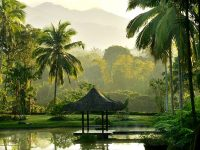 Asia's 10 Top Spas & Wellness Retreats by Industry Expert