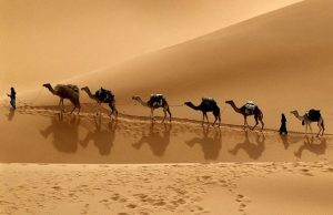 Silk Road Destinations Committed to Sustainable Tourism