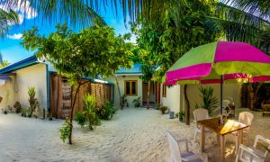 Fast-growing Guesthouse Sector in the Maldives Needs More Marketing Support