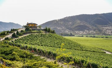 UNWTO, Wine Tourism Conference Celebrates Rural Transformation and Jobs - TRAVELINDEX