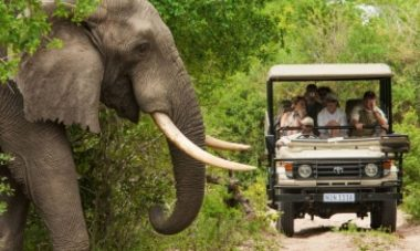 African Destinations Meet to Plan Sustainable Future for Tourism - TRAVELINDEX