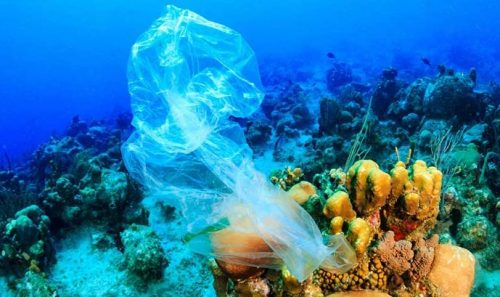 Global Tourism Plastics Initiative Announces Third Round of Signatories